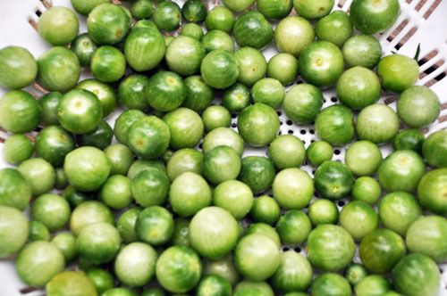 green tomato chutney003